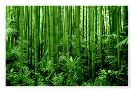 GUGIGEI - bamboo forest
