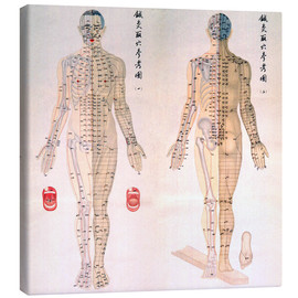 Stampa su tela  Acupuncture Map of the male body
