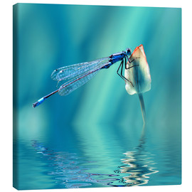 Tela  Dragonfly with Reflection - Atteloi