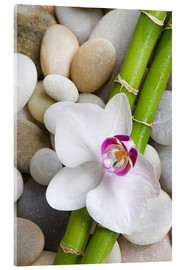 Vetro acrilico  Bamboo and orchid - Andrea Haase Foto