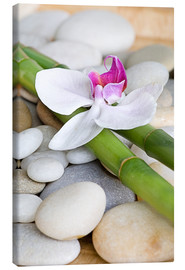 Tela  Bamboo and orchid II - Andrea Haase Foto
