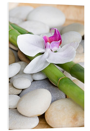 Forex  Bamboo and orchid II - Andrea Haase Foto