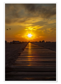 Poster Premium  Evening sun in St Peter Ording on the North Sea - Dennis Stracke