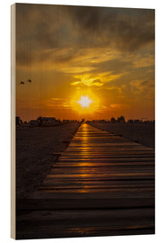 Legno  Evening sun in St Peter Ording on the North Sea - Dennis Stracke