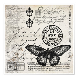 Poster Premium  Vintages Butterfly - Andrea Haase