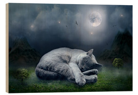 Stampa su legno  Cat dreams at full moon - teddynash
