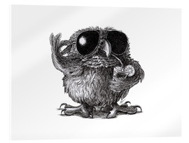 Stampa su vetro acrilico  Cool Owl - Stefan Kahlhammer