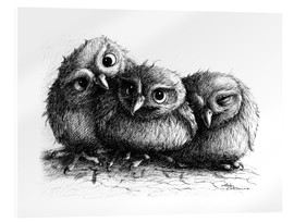 Stampa su vetro acrilico  Three young owls - owlets - Stefan Kahlhammer