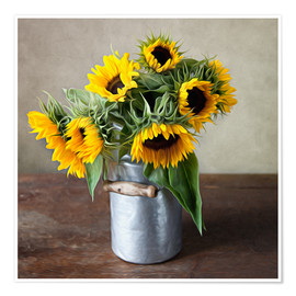 Poster Premium Sunflowers 01