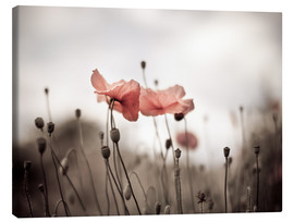 Tela  Poppies 03 - Nailia Schwarz