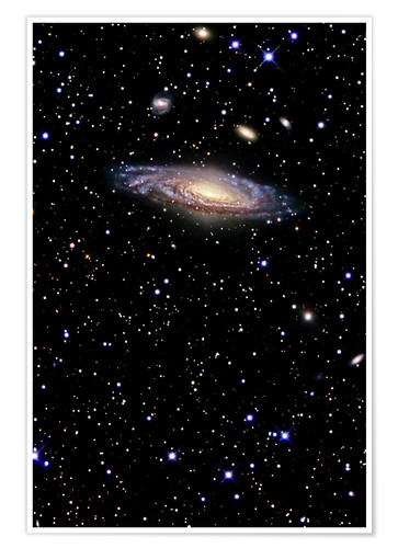Poster Premium Spiral galaxy in the constellation Pegasus