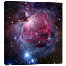 Stampa su tela  The Orion Nebula - Robert Gendler
