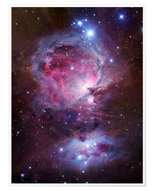 Poster  the Orion Nebula - Robert Gendler