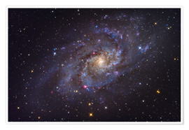 Poster Premium The Triangulum Galaxy