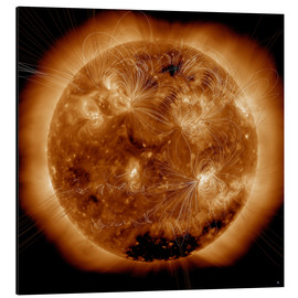 Stampa su alluminio  Magnetic field lines on the Sun - Stocktrek Images