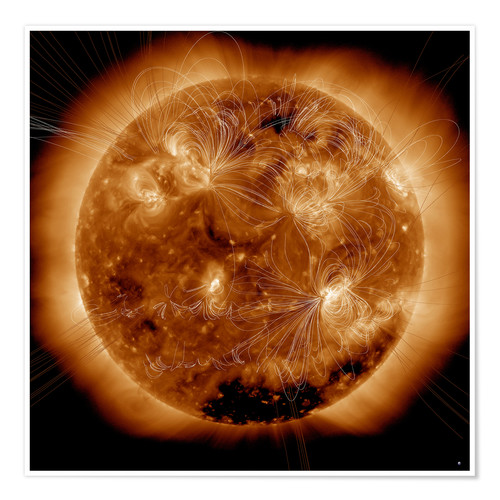 Poster Premium Magnetic field lines on the Sun