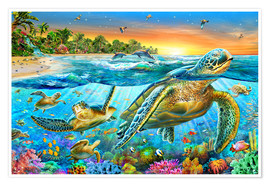 Poster Premium  Underwater turtles - Adrian Chesterman