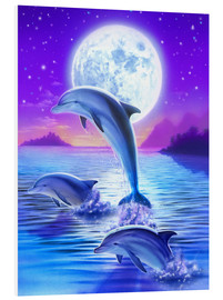Forex  Day of the dolphin - midnight - Robin Koni