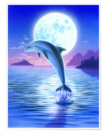 Poster Premium  Day of the dolphin - midnight - Robin Koni