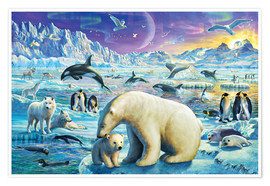 Poster Premium  Arctic Night - Adrian Chesterman