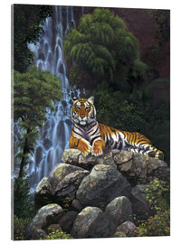 Stampa su vetro acrilico  Tiger waterfall - Chris Hiett