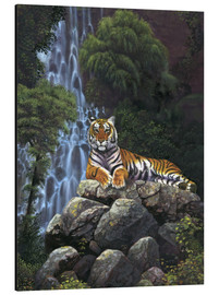 Stampa su alluminio  Tiger waterfall - Chris Hiett