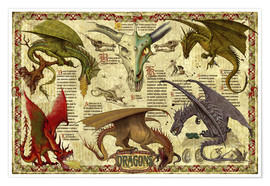 Poster  Dragon study - Garry Walton