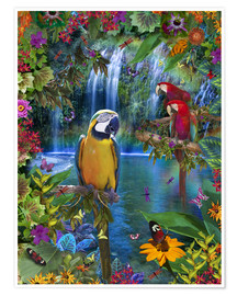 Poster Premium  Bird Tropical Land - Alixandra Mullins