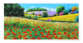 Poster Premium Flower meadow in the province