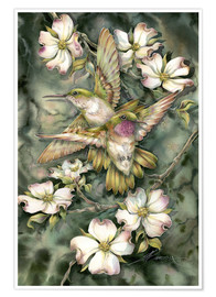Poster Premium  Hummingbirds and flowers - Jody Bergsma