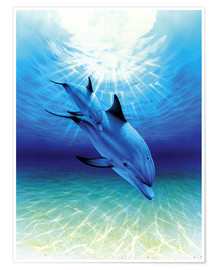Poster Premium  Diving through sunbeams - Robin Koni