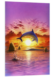 Stampa su PVC  Day of the dolphin - sunset - Robin Koni