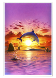 Poster Premium  Day of the dolphin - sunset - Robin Koni