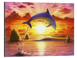Stampa su alluminio  Day of the dolphin - sunset - Robin Koni