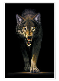 Poster  Stalking wolf - Chris Hiett