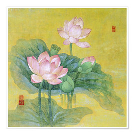 Poster Premium Dream lotus
