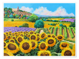 Poster Premium  Vineyards and sunflowers in Provence - Jean-Marc Janiaczyk