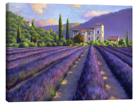 Stampa su tela  Lavender field with Abbey - Jay Hurst