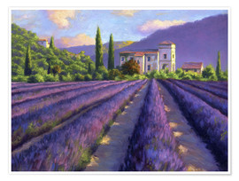 Poster Premium  Lavender field with Abbey - Jay Hurst