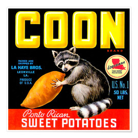 Poster Premium  Coon - Advertising Collection