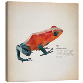 Stampa su tela  fig5 polygon frog square - Labelizer
