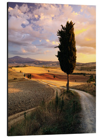 Alluminio Dibond  Sunset over Val d'Orcia, Tuscany - Matteo Colombo
