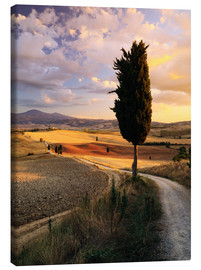 Tela  Sunset over Val d'Orcia, Tuscany - Matteo Colombo