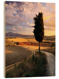 Legno  Sunset over Val d'Orcia, Tuscany - Matteo Colombo