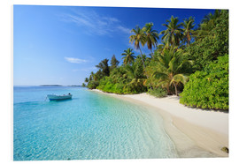 Forex  Tropical beach with palms, Maldives - Matteo Colombo