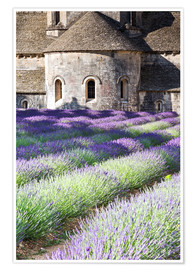 Poster Premium  Senanque abbey and lavender, Provence - Matteo Colombo