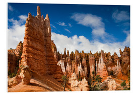 Stampa su schiuma dura  Queen's garden trail at Bryce Canyon - Circumnavigation