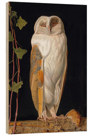 Stampa su legno  The White Owl - William James Webbe