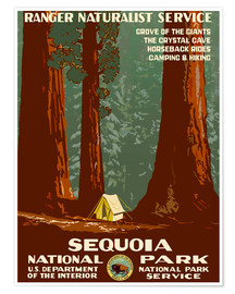Poster Premium  Sequoia National Park - Travel Collection