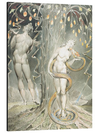 Stampa su alluminio  Adam and Eve - William Blake